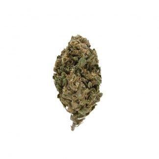 silver quinn cannabis light