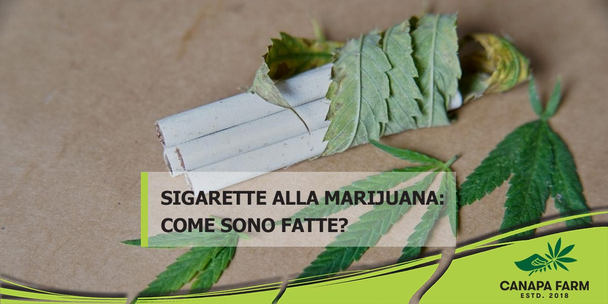 sigarette alla marijuana