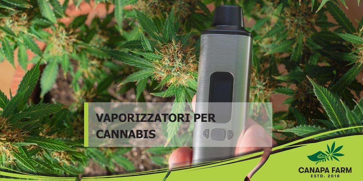 vaporizzatore cannabis