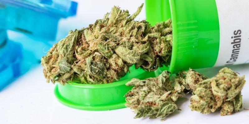 cannabis farmaceutica infiorescenze