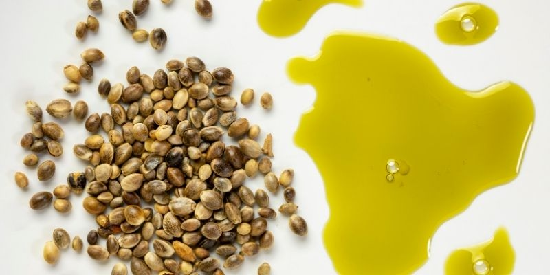 olio di semi di canapa, colore e sapore