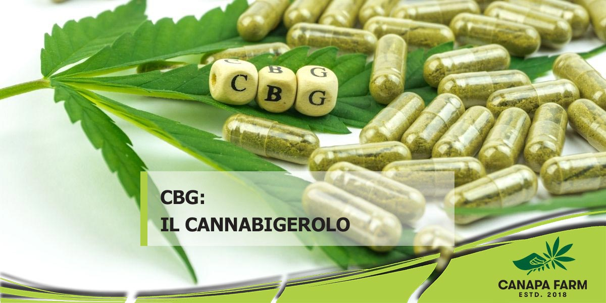 CBG cannabigerolo cannabis