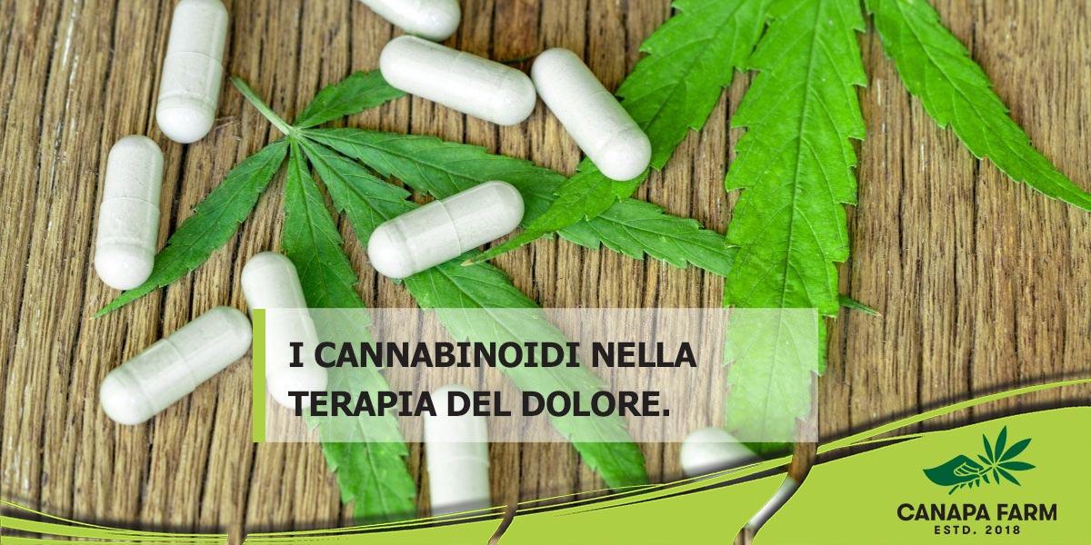 farmaci cannabinoidi nella terapia del dolore