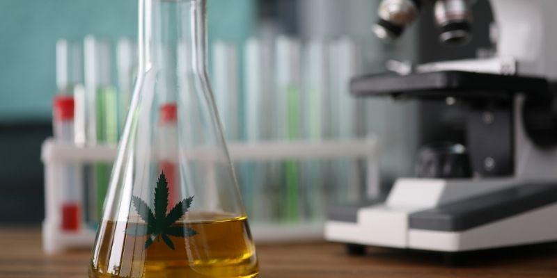 ricerca cannabis disturbo post traumatico da stress