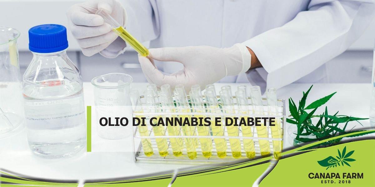 olio di cannabis e diabete