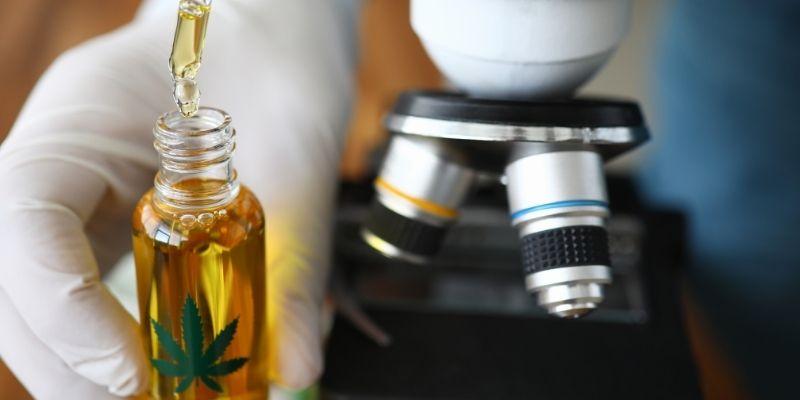 olio di cannabis diabete ricerca