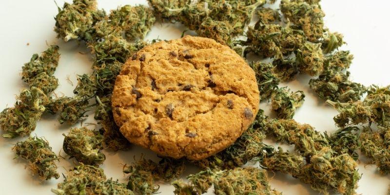 biscotti alla marijuana fatti in casa